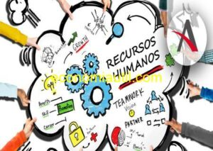 funciones del área de recursos humanos
